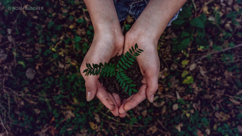 Nachhaltige Kulturpraxen – Was Politik und Betriebe unternehmen